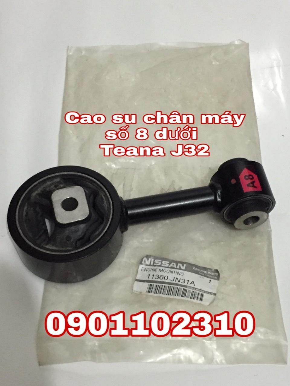 Cao su chân máy số 8 dưới Nissan Teana 11360JN31A